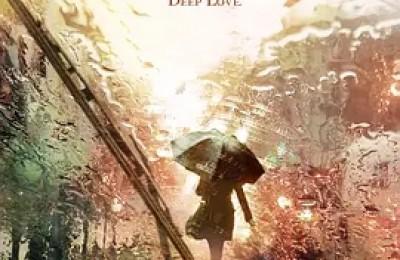 不是深圳没有爱情